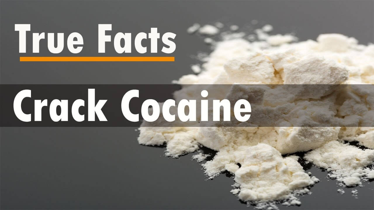 Crack Cocaine, Truth, Scientists, Studies, Lil Wayne