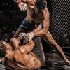 MMA, Mixed Martial Arts, Brain, Damage, Science