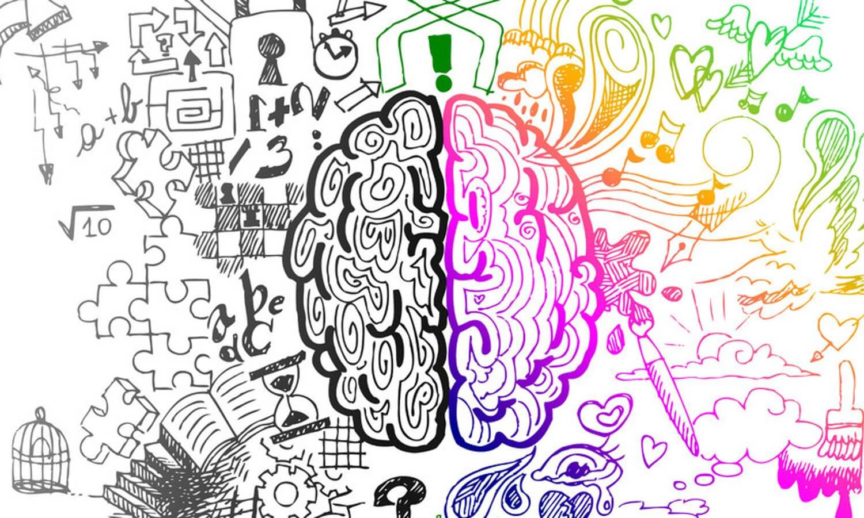 Creativity, Drawing the brain, supplements, brain supplements, drawing, intelligence, brain booster
