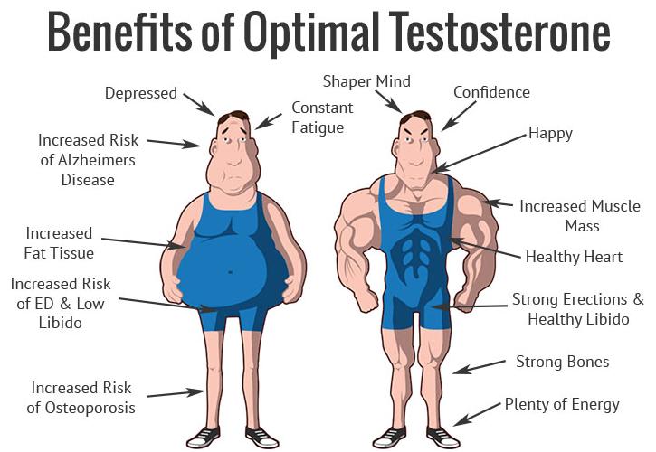 Testosterone, Optimal Testosterone, test freak scam, PharmaFreak Test Freak, Test Freak review, test freak supplement facts, test freak ingredients