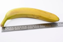 Banana next to ruler