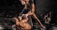 Mixed Martial Arts and Brain Damage